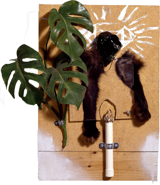 Carlos Pazos, Asperge au diamant noir, 1988