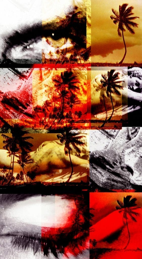 Vanessa Pey, Sin título.Serie Asche der Zeit, 2000