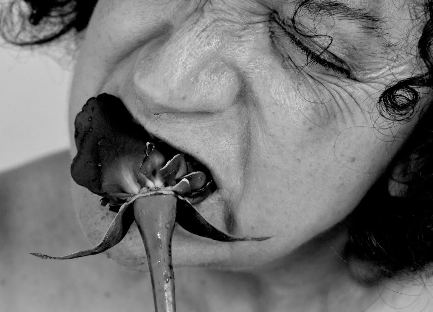 Días de Vino y Rosas III, 2016