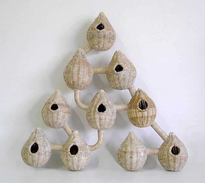 Nidos-u-nidos, 2005